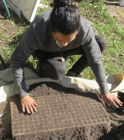 Imraan prepares a tray with the sandy cutting mix