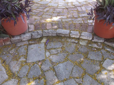 hard landscaping using 4 different recycled materials, bricks, concrete shatter, cobble stones and plastic tub