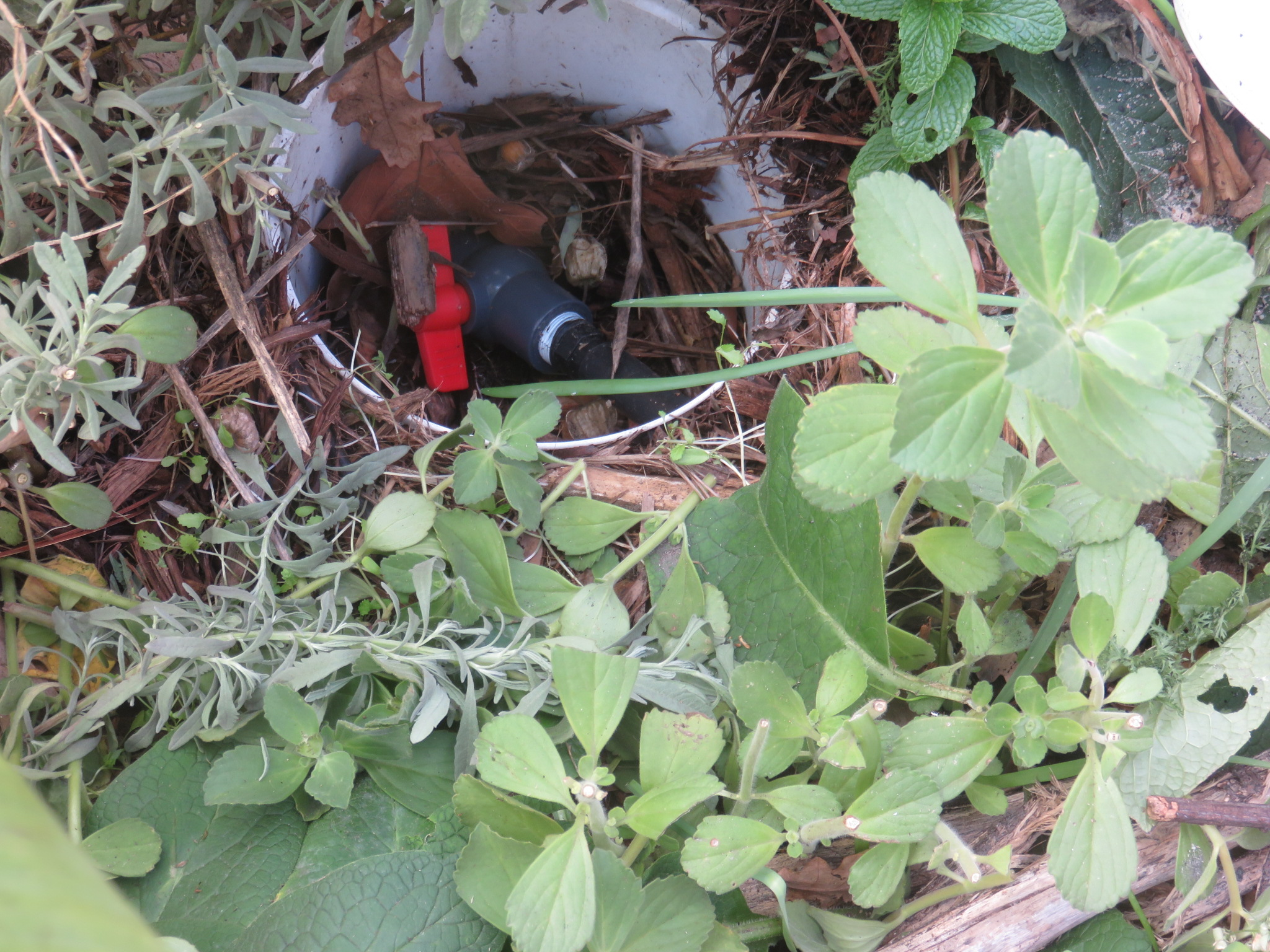 outlet valve protected by bucket buried in mulch pit