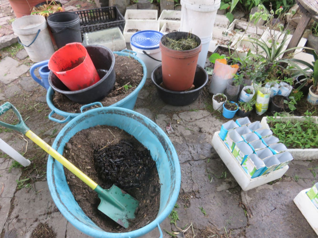 Potting soil, additives, planters and trays.