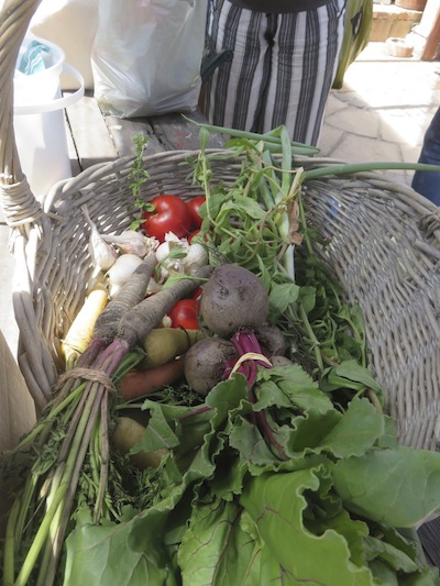 A hamper of organic veggies brought to Zayaan Kahn's fermentation workshop at Cape Point