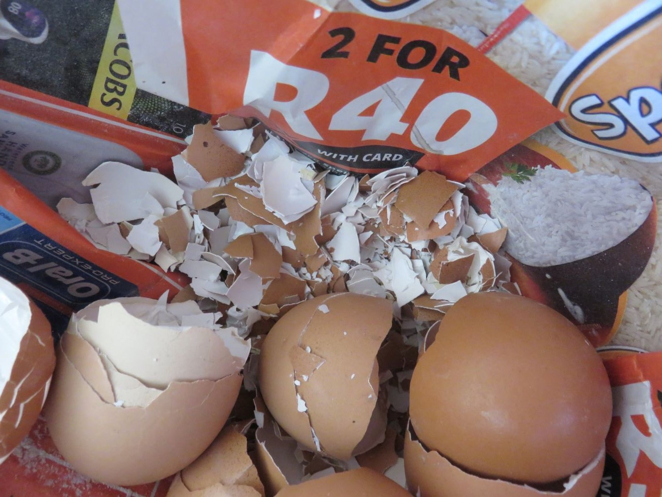 feed worms crushed eggshells for multiple benefits