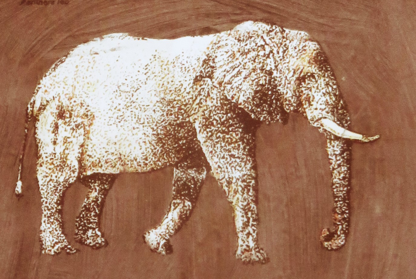Elephant, four color print