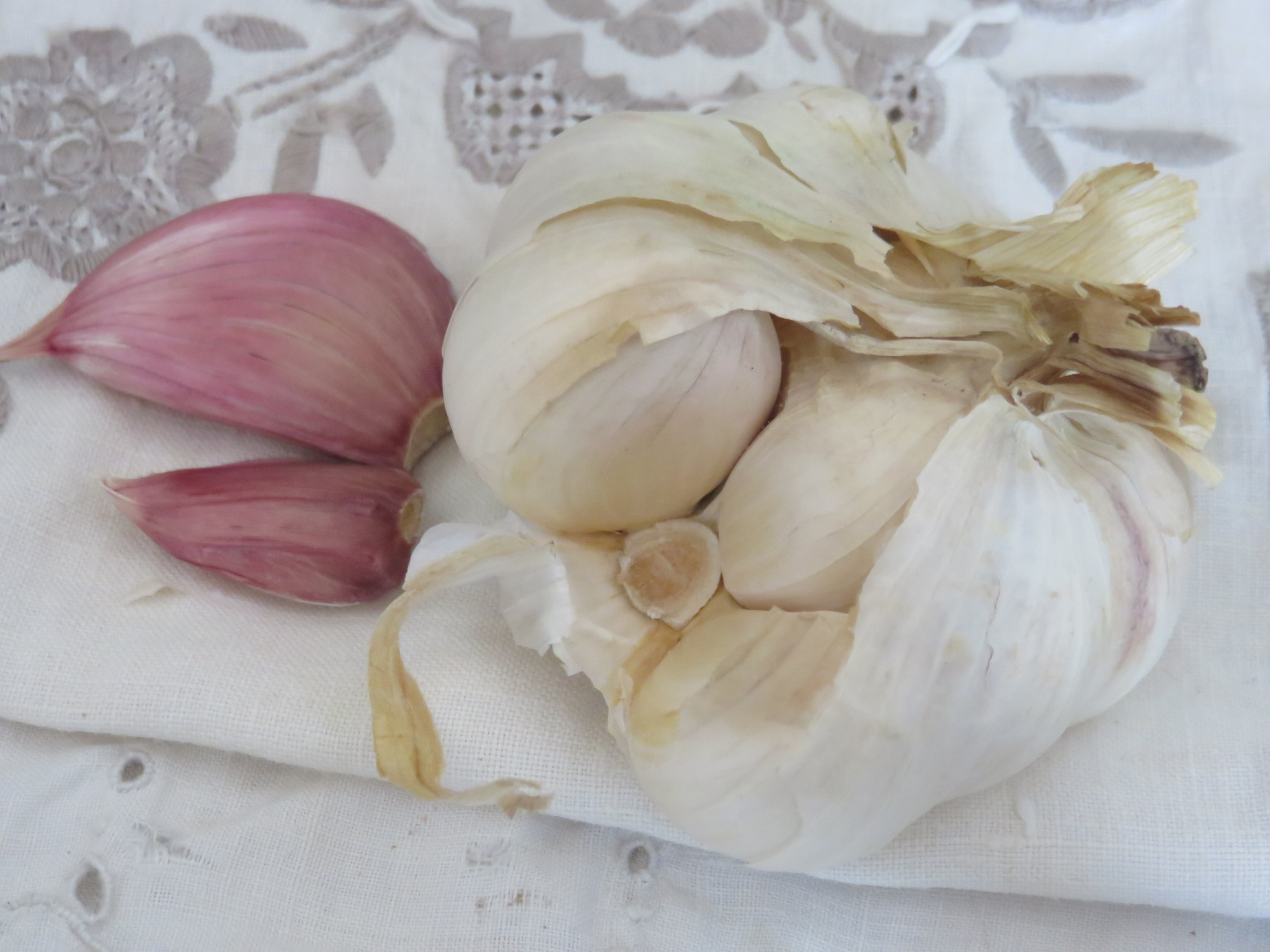 Garlic is a super herb for its wide spectrum of protection against degenerative disease