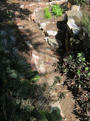 one of the soft garden paths floored with leaf mulch which meanders through the vegetable garden