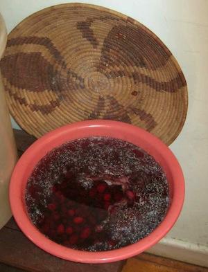 Curing olives, Calamata style