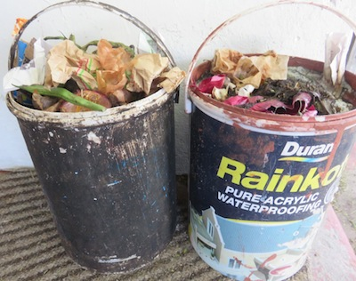 collect kitchen waste in any old buckets