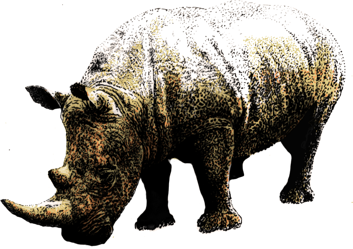 One of the most endangered African animals.