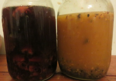 tamarillo and grenadilla seeds fermenting