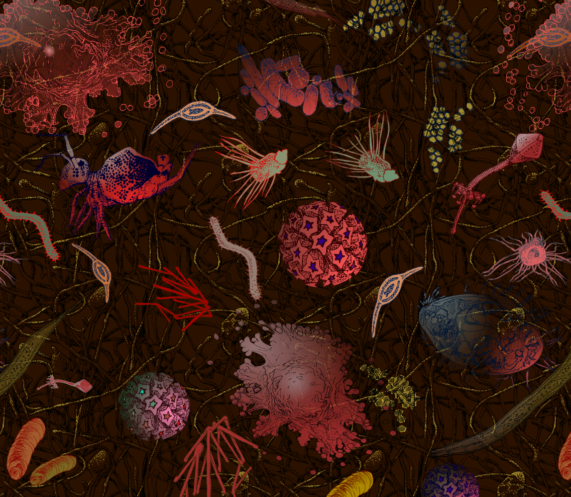 In this close up you can see most of the creatures in the soil microbe design
