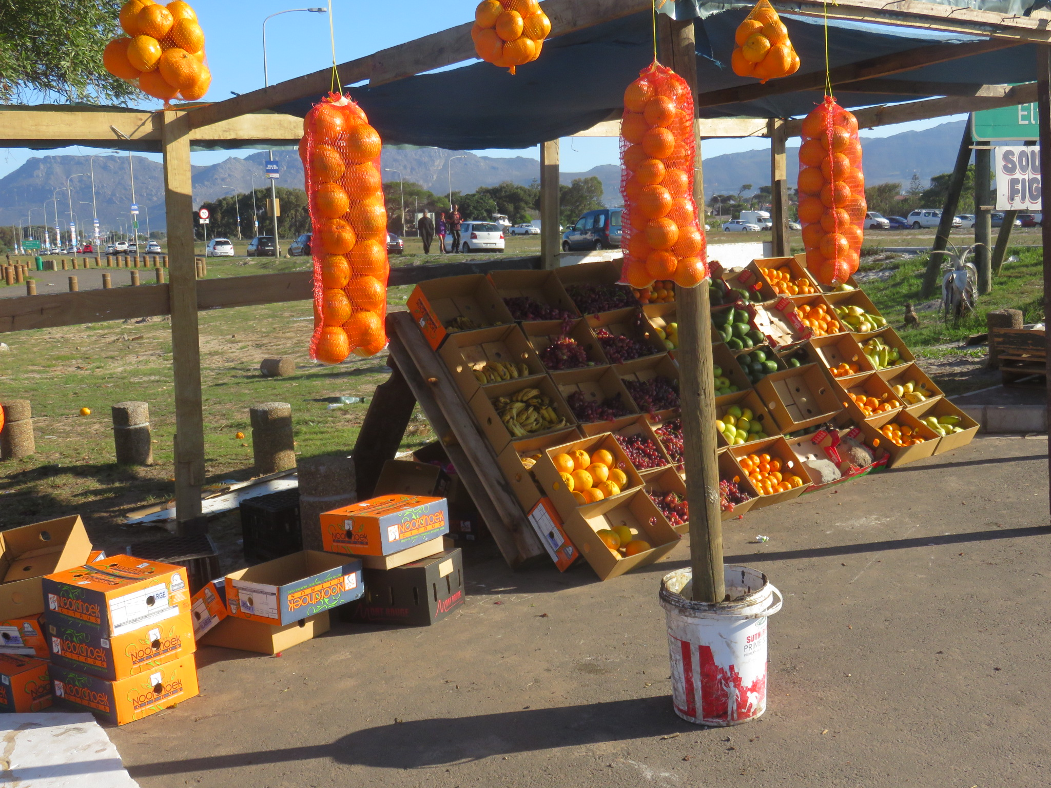 A fruit stall on the M5 near Grassy Park in Cape Town. On the right edge of the picture you can see the words 'Sour figs' above a massive pyramid of the dried fruit.