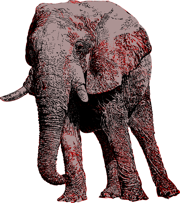 The largest of the African land mammals, the African elephant.