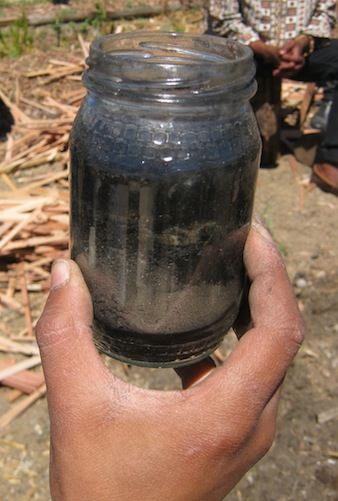 millenia of veld fires cause our sand to reject water, and charcoal makes it permeable again