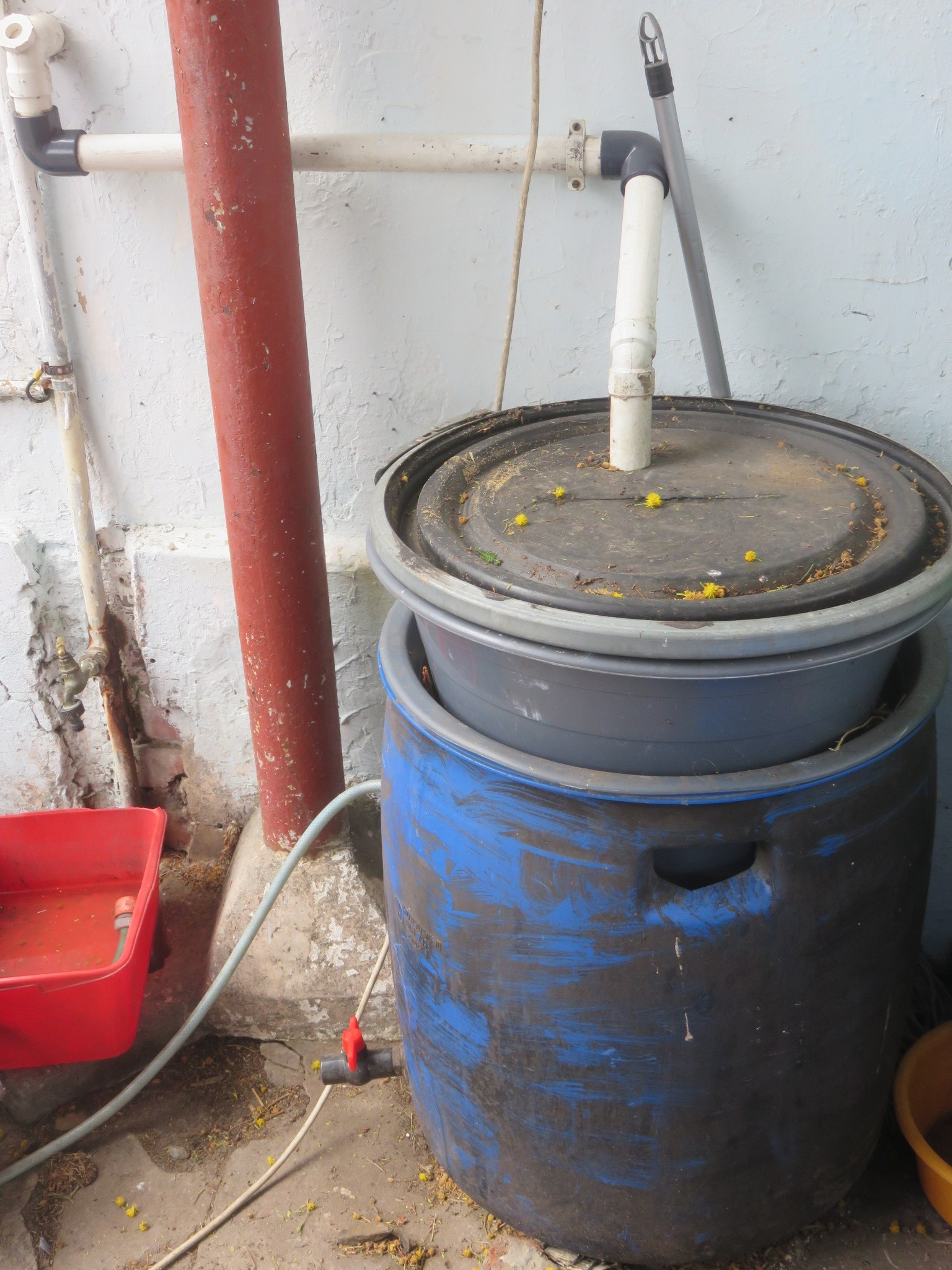 The first stage of recycling grey water in our system: worm bin and fat digester barrel.
