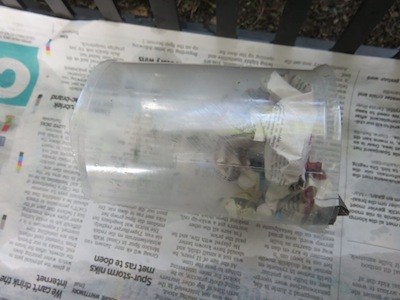 the newspaper ball keeps the soil in the tube, but vegetable seeds grow through the newspaper ball