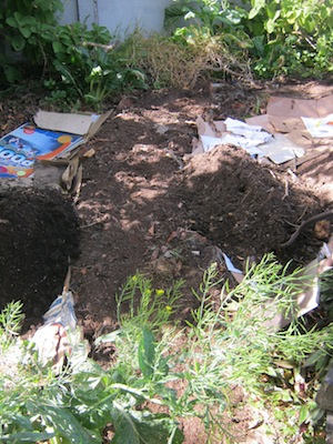 fill with compost