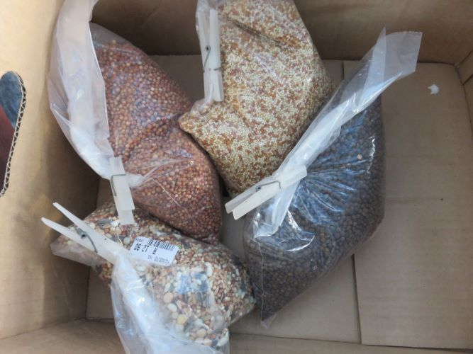 cover crop seeds from the pet shop