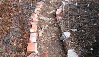 mesh laid on the ground to stop birds scratching out emerging seedlings