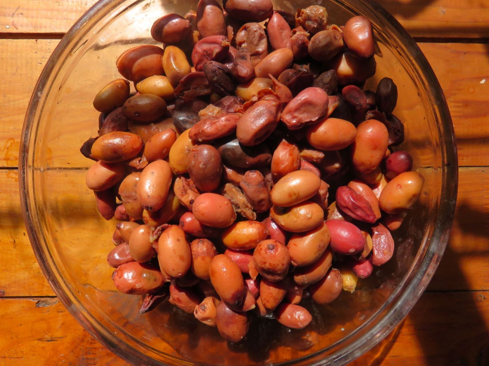 The fruit after fermentation and sorting.