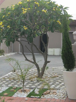 different kinds of paving embedded in concrete