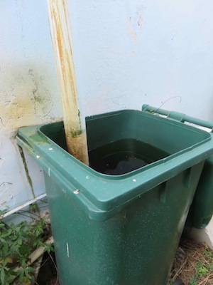 pure rain barrel