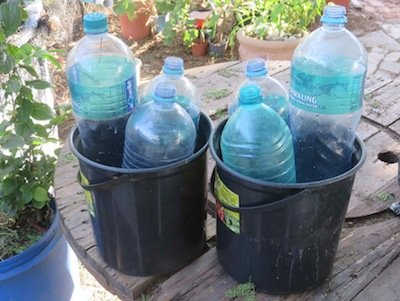 buckets and bottles for quick immersion