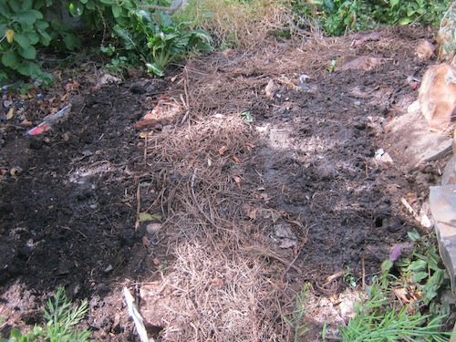 The finished partly shaded south beds used to be raised
