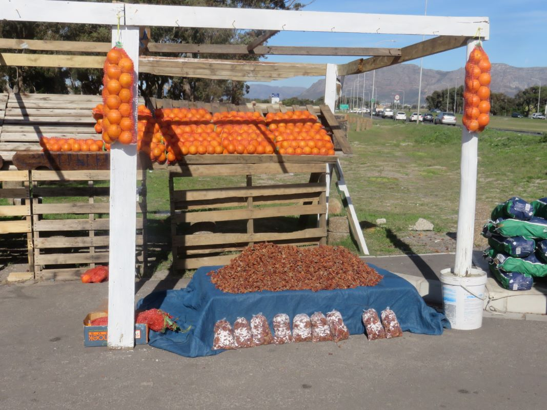 A fruit stall on the M5 near Grassy Park in Cape Town. On the right edge of the picture you can see the words 'Sour figs' which is above a massive pyramid of the dried fruit.