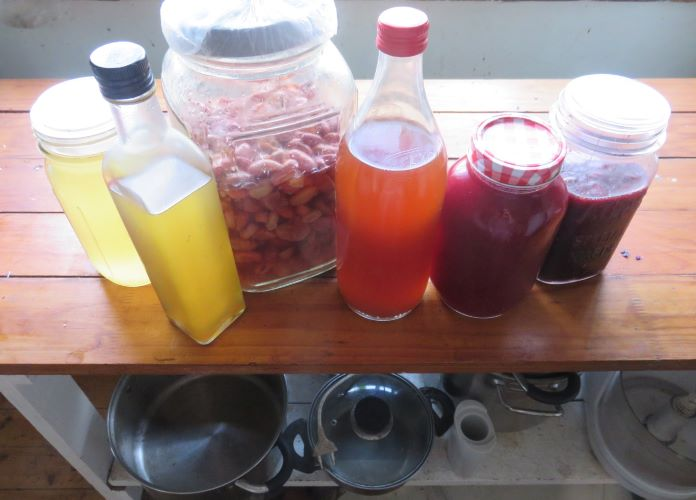 pineapple, numnum, pear, herb, vinegars